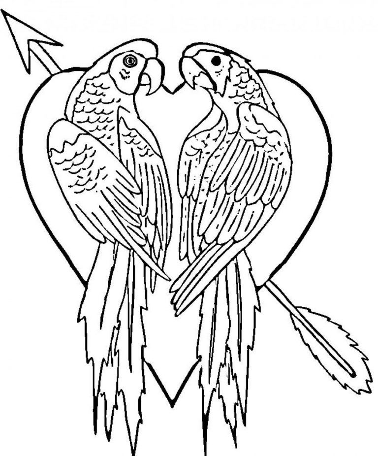 Free Printable Parrot Coloring Pages For Kids Love Coloring