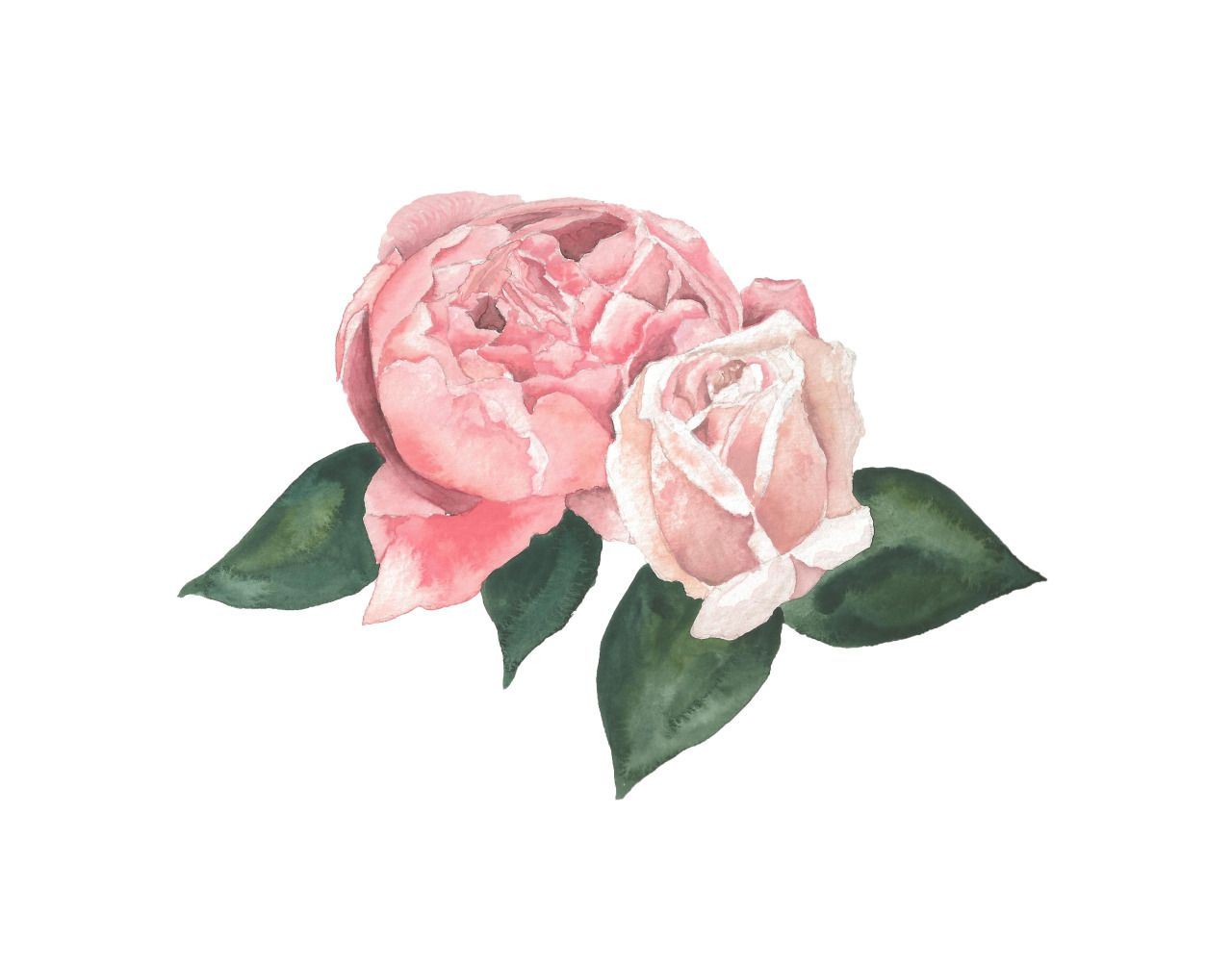 Image Result For Cute Flower Drawings Tumblr