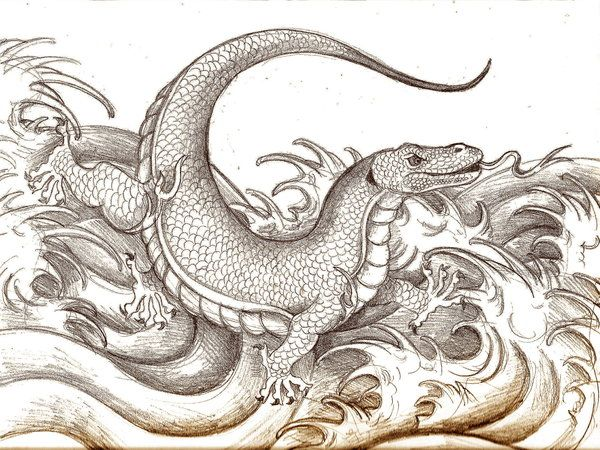 Dragon Of Komodo By Dragoncid On Deviantart Komodo Komodo Dragon Dragon Tattoo