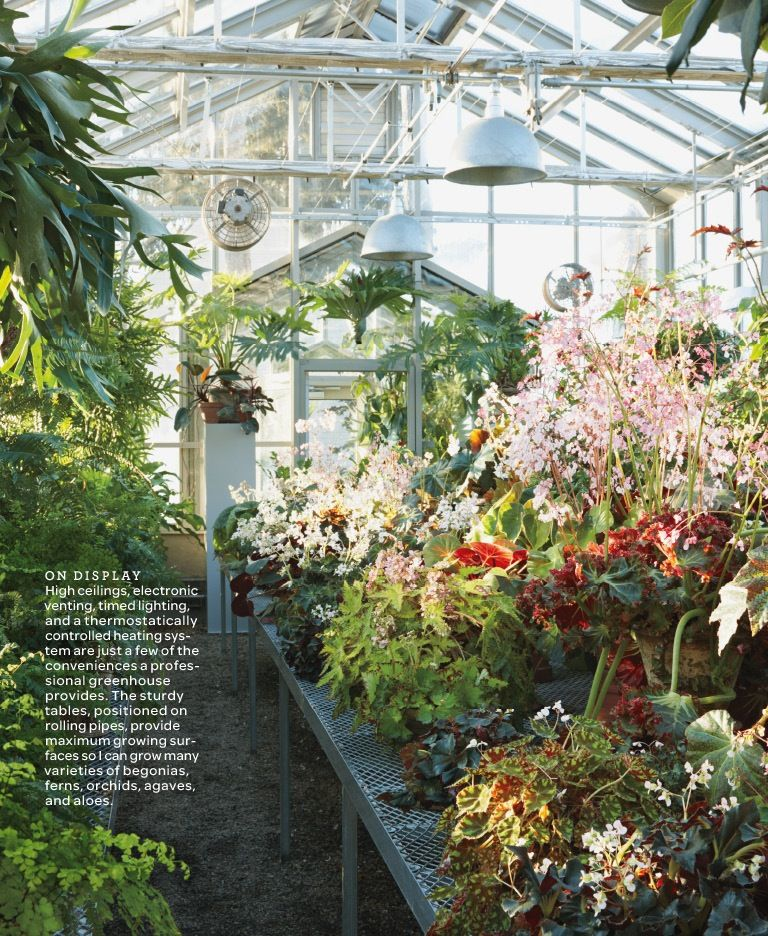 Gentil Greenhouse Interior