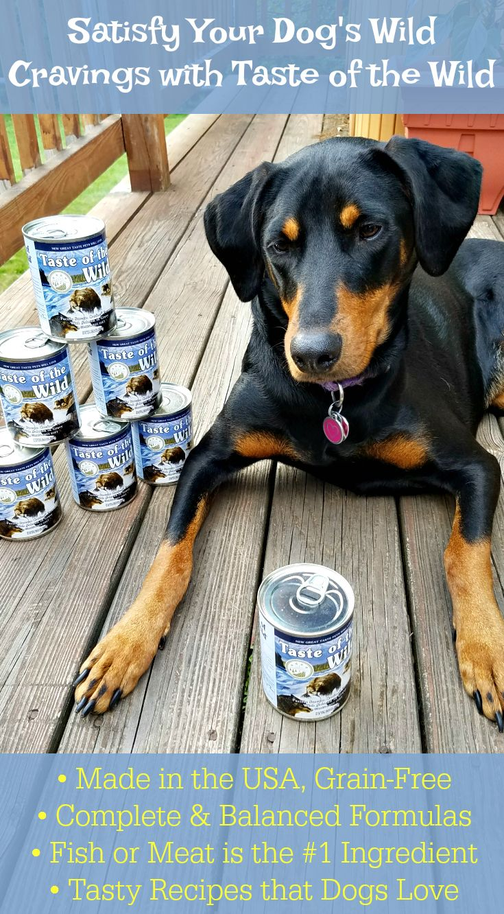 Satisfy your dogs craving for a taste of the wild