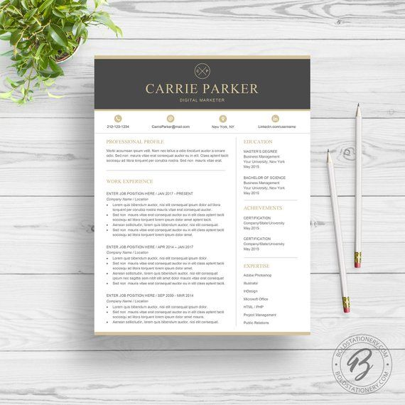Professional Resume Template for Word Creative Resume Design Two
