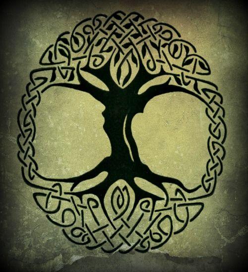 Celtic Tree Of Life Tattoo 1