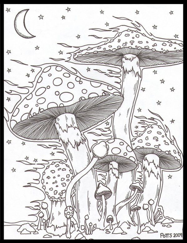 Mushrooms In The Wind By Jpotts90 On Deviantart Mushroom Drawing Psychedelic Drawings Colorful Drawings