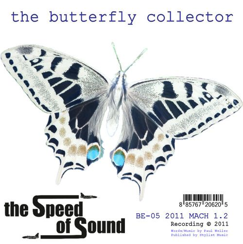 Artwork for the mp3 single The Speed of Sound - The Butterfly Collector