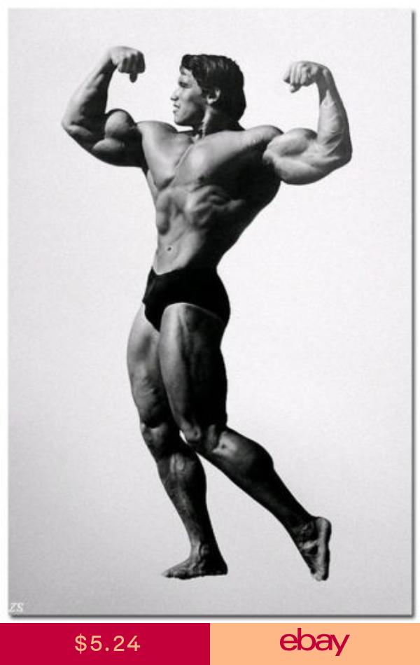 Arnold Schwarzenegger Silk Wall Poster Bodybuilding Picture 13x20 Inch Arnold Schwarzenegger Bodybuilding Schwarzenegger Bodybuilding Bodybuilding Pictures