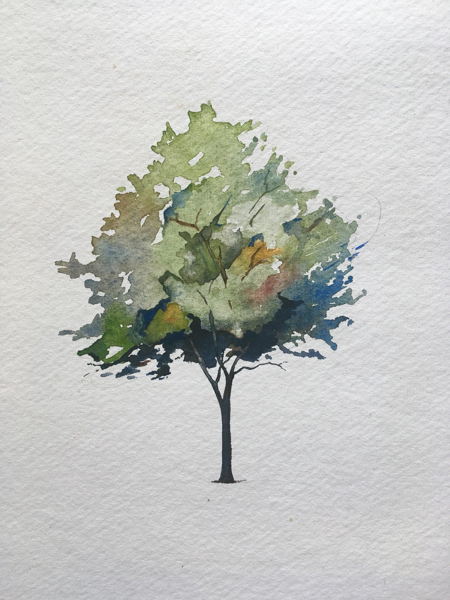 How To Paint A Tree In Watercolors Painting Watercolor