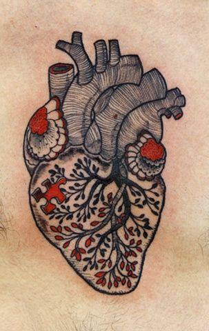 Heart by David Hale