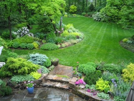 Pin By Lori Capener On Outdoors Porch And Patio Large Backyard Landscaping Large Yard Landscaping Backyard Landscaping