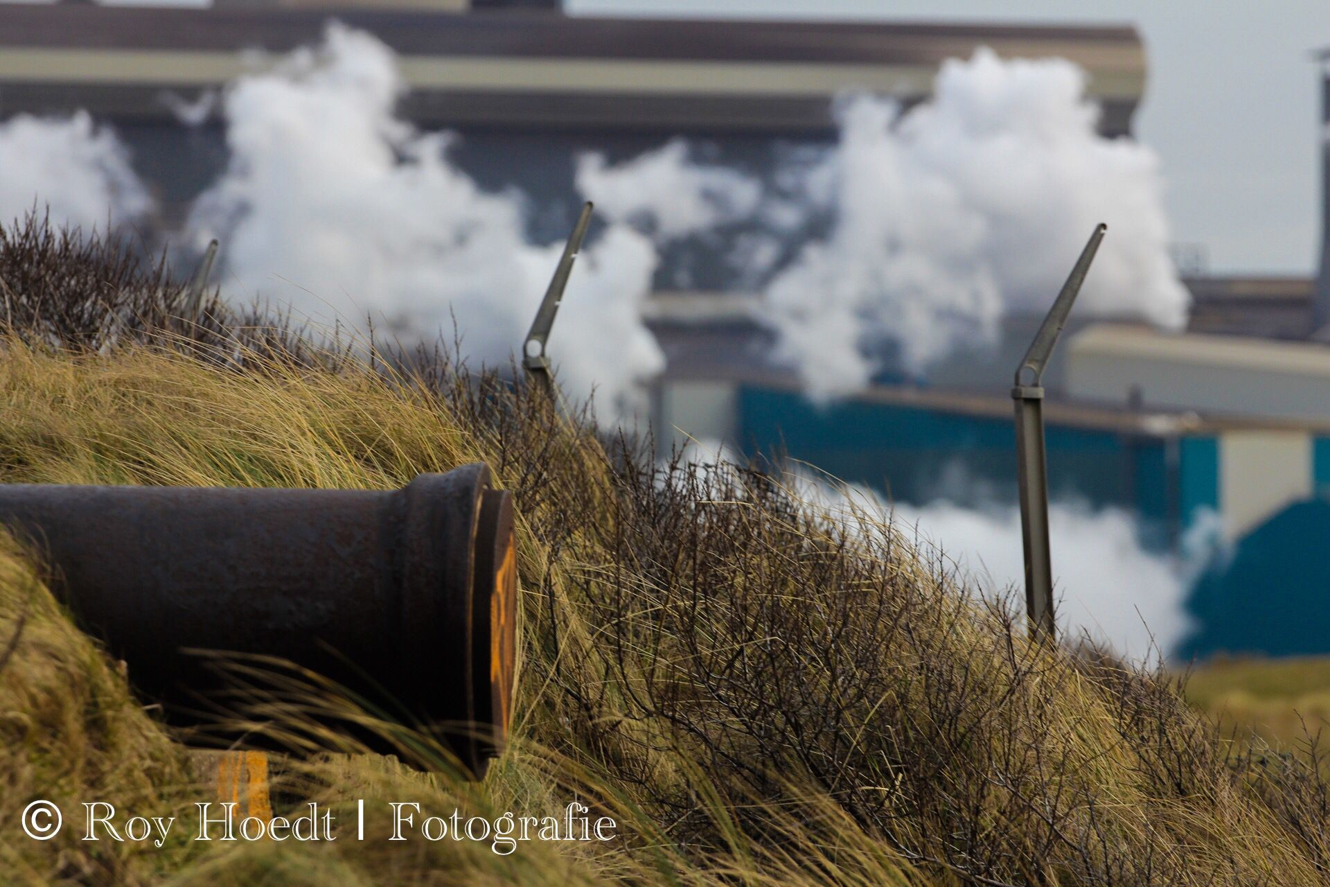 28-02-2015 Duinen Wijk aan Zee