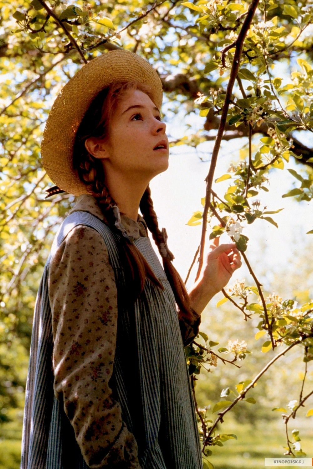 Anne of Green Gables If youre going to call me Anne be