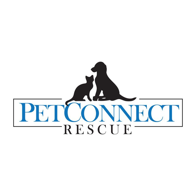 Petconnect rescue is an organization that works with over