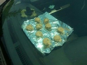 Bake cookies on your Dashboard!  Car Cookies #DashKIts #DashTrimKit #CustomInteriors #Rvinyl