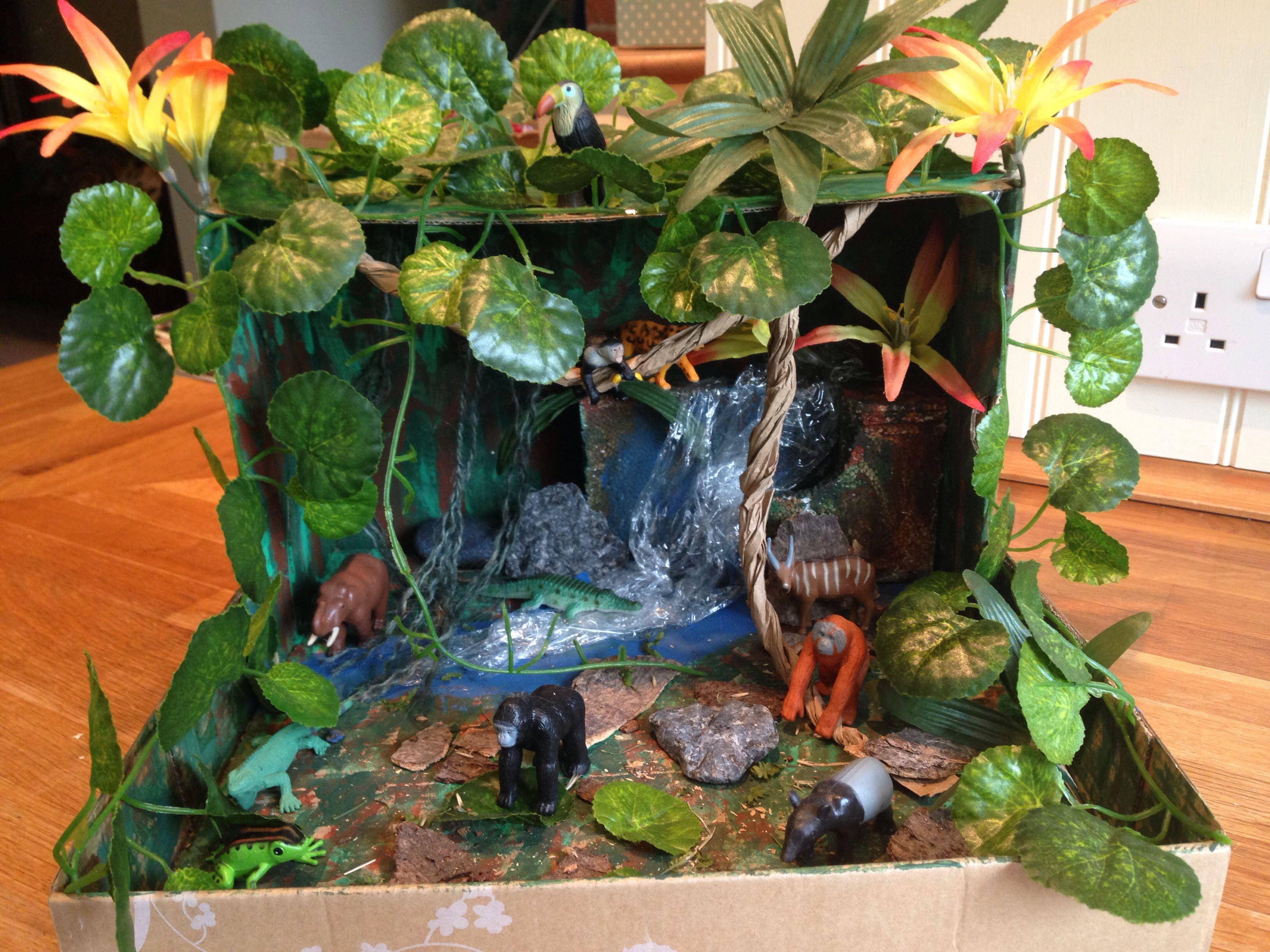 Rainforest habitat diorama images for Habitat container