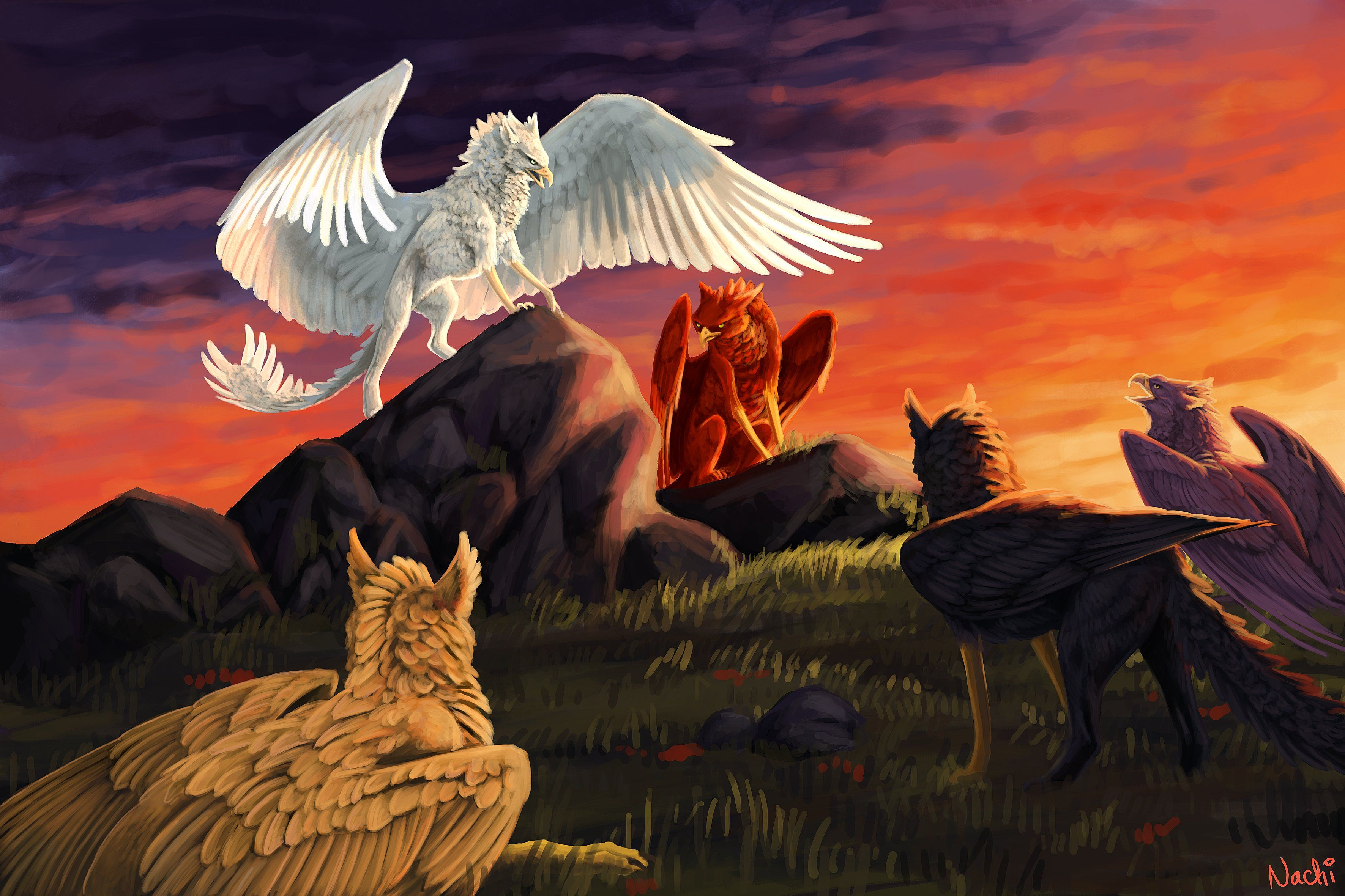 Fantasy art artwork griffin creature bird f wallpaper 3543x2362 720115 wallpaperup - A picture of a griffin the creature ...
