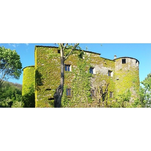 E poi ti accorgi di essere circondata da luoghi meravigliosi come questo..Castello di Tresana
