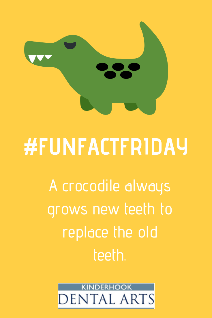 #FUNFACTFRIDAY #ValatieDentist #NYDentist #Dentist #Dentistry #Dental #Teeth #Smile #Tooth #DentalFacts #OralHealth #Toothbrush #DentalHygienist #DentalAssistant #DentalHealth #DentalSchool #DentalLife #FamilyDentist #DentalHygiene #DentalStudent #DentalCare #HealthyTeeth #HappyTeeth #WhiteTeeth #Health #Follow #Beauty #FunFacts #CleanEats #HealthyLiving #dentalfacts