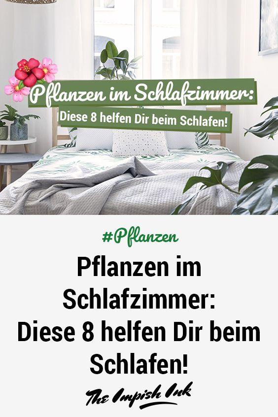 Pflanzen im Schlafzimmer: Diese 8 helfen beim Schlafen! #pflanzenimschlafzimmer
