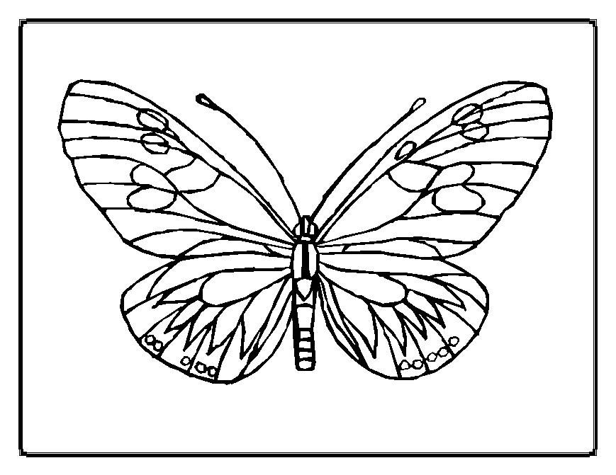 Printable Geometric Butterflies Coloring Pages Butterfly Coloring Pages 01