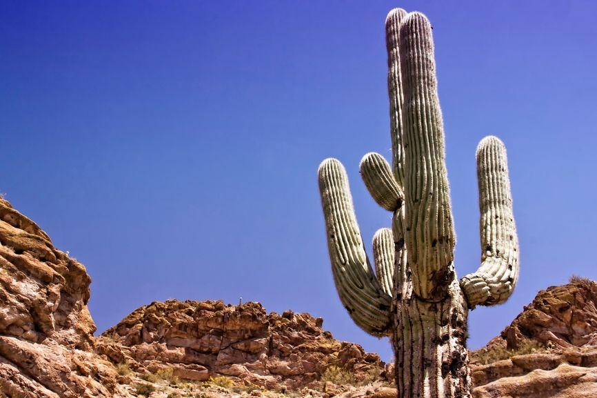 Top Six Tucson Summer Fun Hot Spots To Beat The Heat - #3