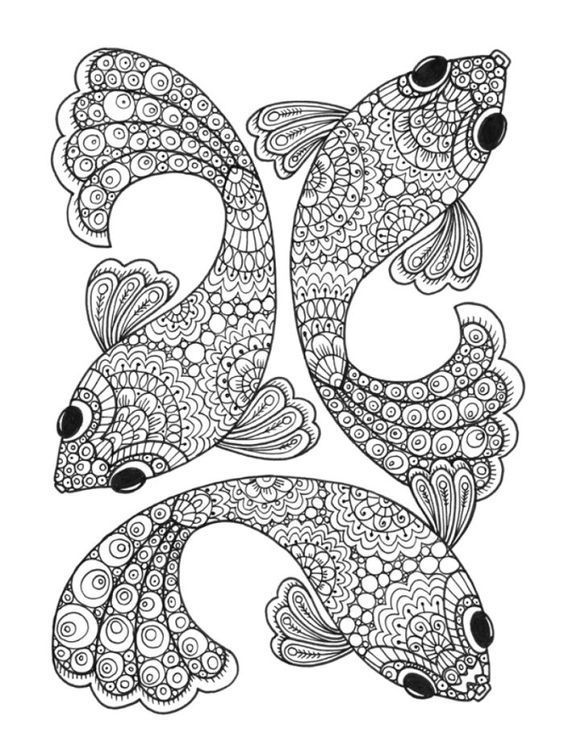 Print Coloring Fish Pages For Adults In 1000 Ideas About Adult Colouring On