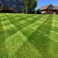 Nothing Says Prosperity Like A Groomed Yard Scag Mowers Yard Lawn Striping Outdoor Lawn