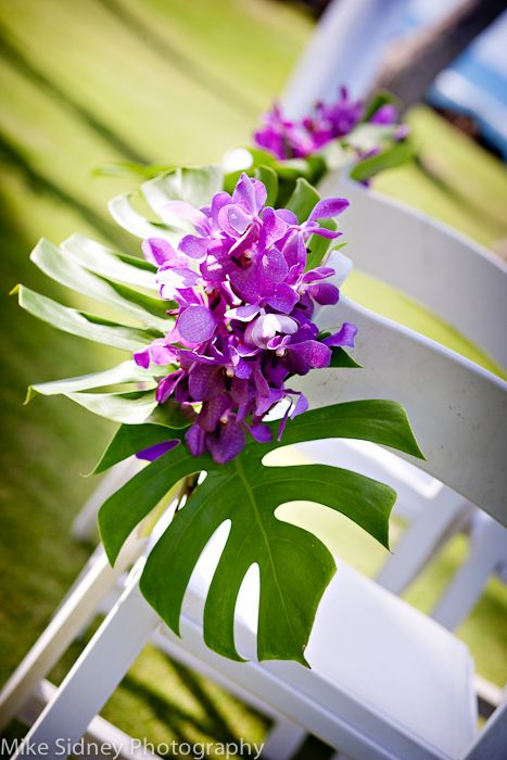 orchid maui wedding chair flowers maui wedding decor pinterest wedding flowers and bird. Black Bedroom Furniture Sets. Home Design Ideas