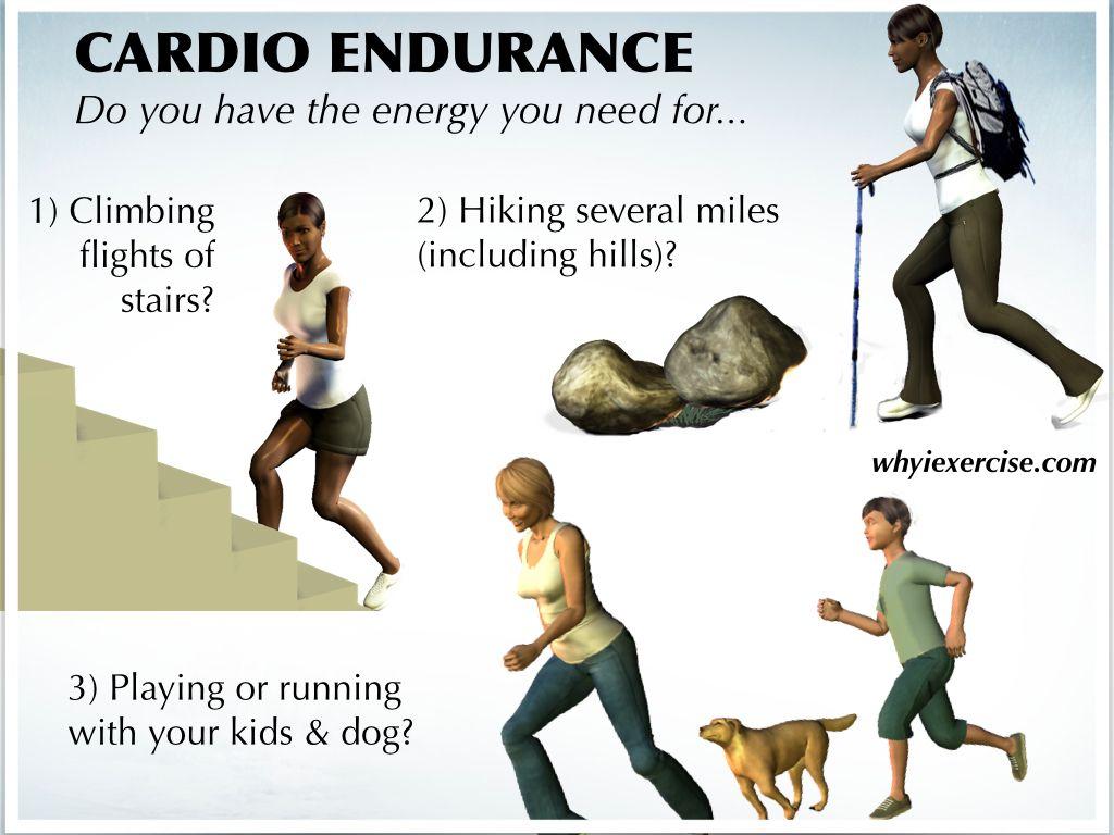 Endurance is ... Physical endurance. Limit of endurance. Stamina development