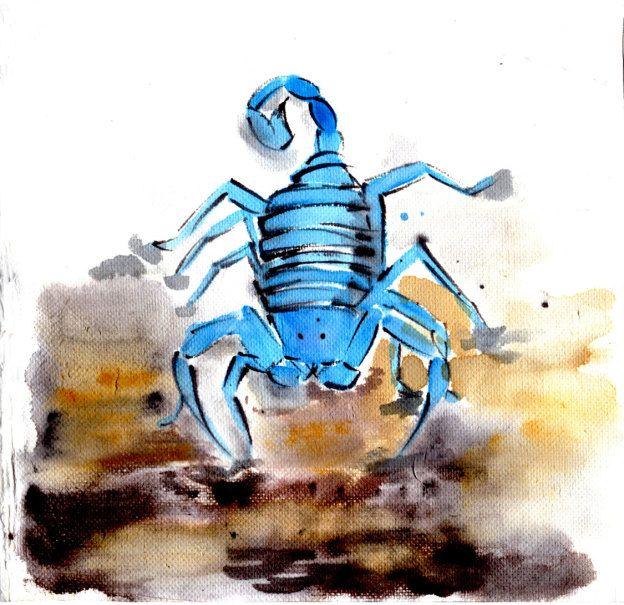 Blue Scorpion – Red Moth Art
