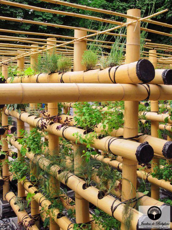Agriculture urbaine : potager urbain en bambou