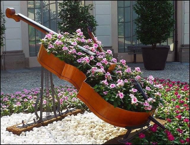Double bass flower bed