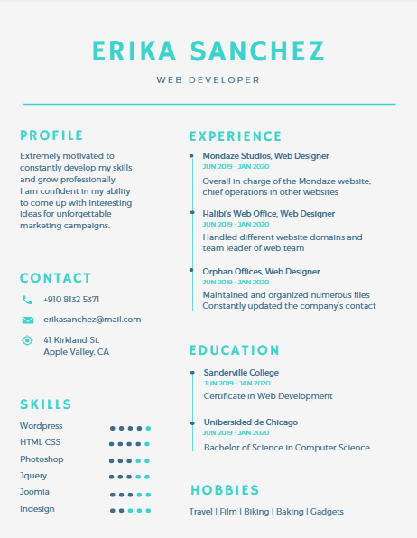 Canva 1 Resume Template Resume Ideas Infographic Resume