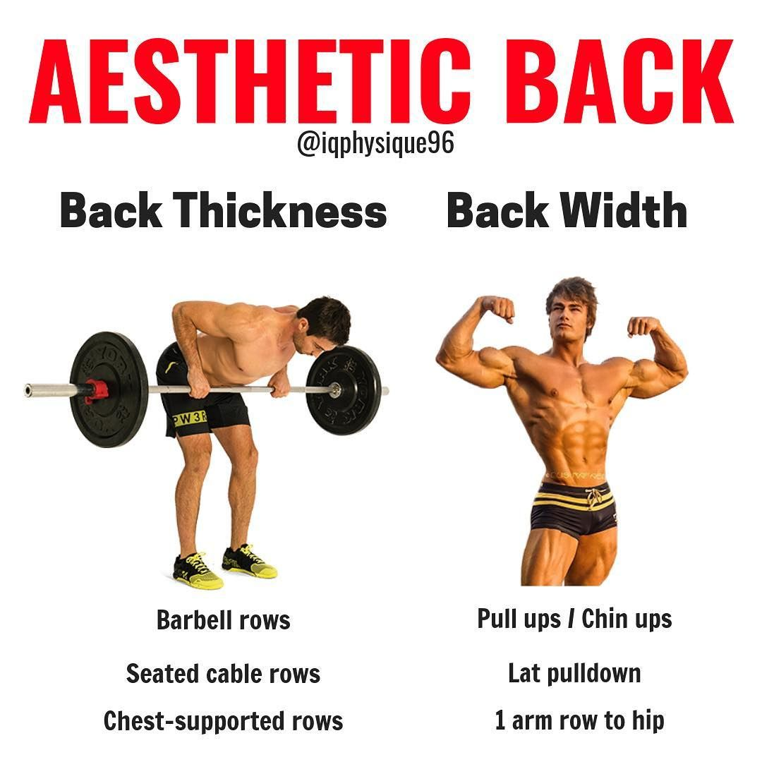 The Best Five Moves To Build A Stronger Broader Upper Back With Crazy Definition Gymguider Com Workout For Beginners Gym Workout Tips Back Workout