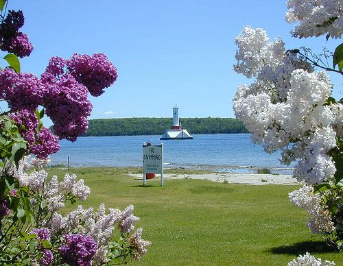 Mackinac Island Lilac Festival Favorite Places And Spaces Pinterest Mackinac Island