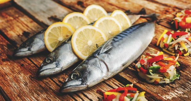 mackerel  sustainable seafood seafood company frozen