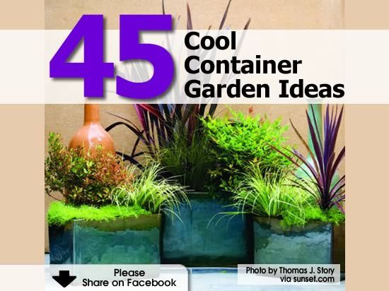 45 Cool Container Garden Ideas - //www.hometipsworld... | Como ... Home Tips World on christmas world, travel world, food world, books world, garden world, shopkins world, green world,