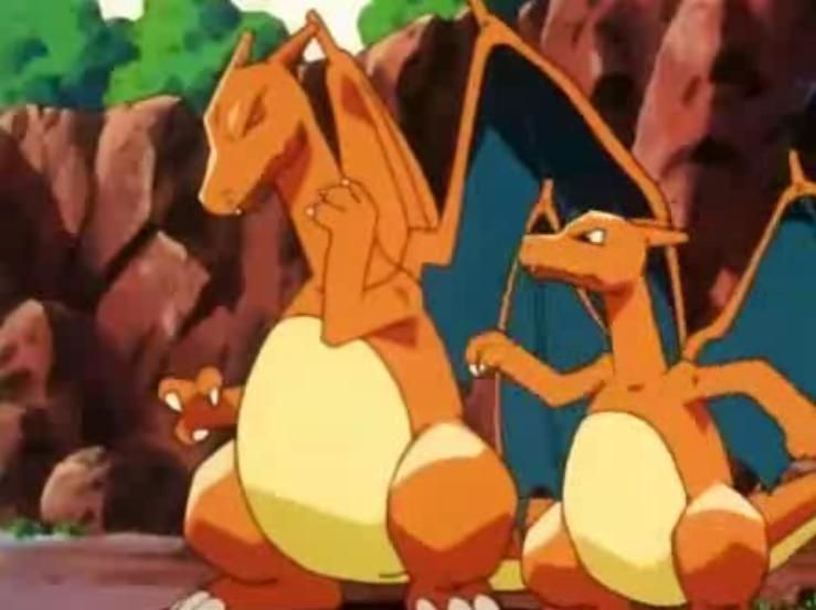 Charizard charizard pokemon pokemon cards