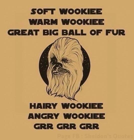 Soft Wookiee