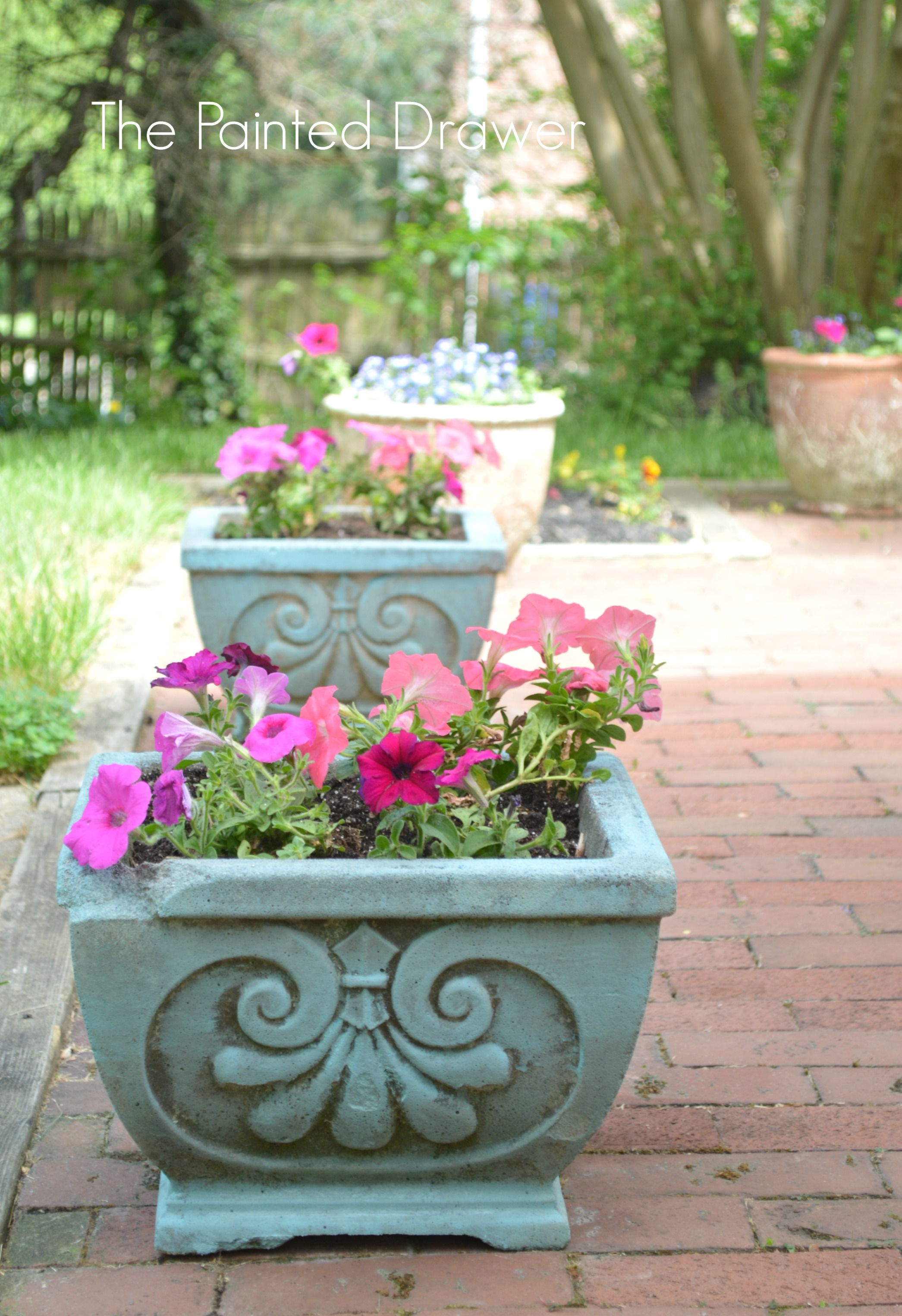 update concrete planters with a wash of provence chalk paint
