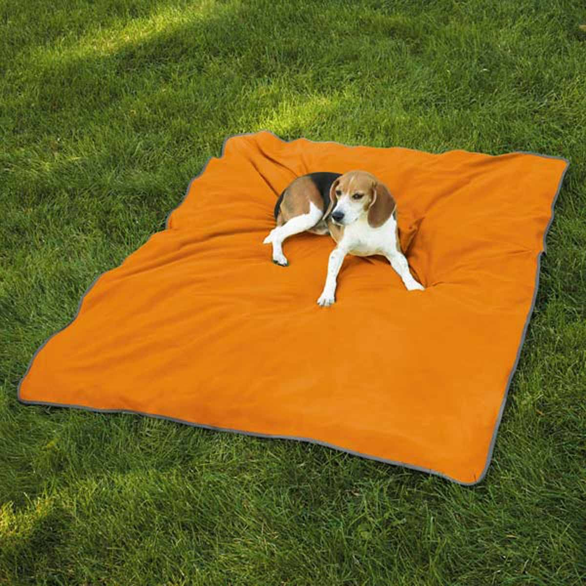 Insect Shield Pet Blanket - Carrot 15 Both Sizes