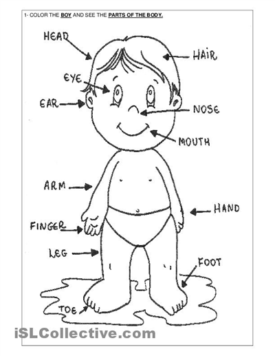 Related Body Parts Coloring Pages For Preschool