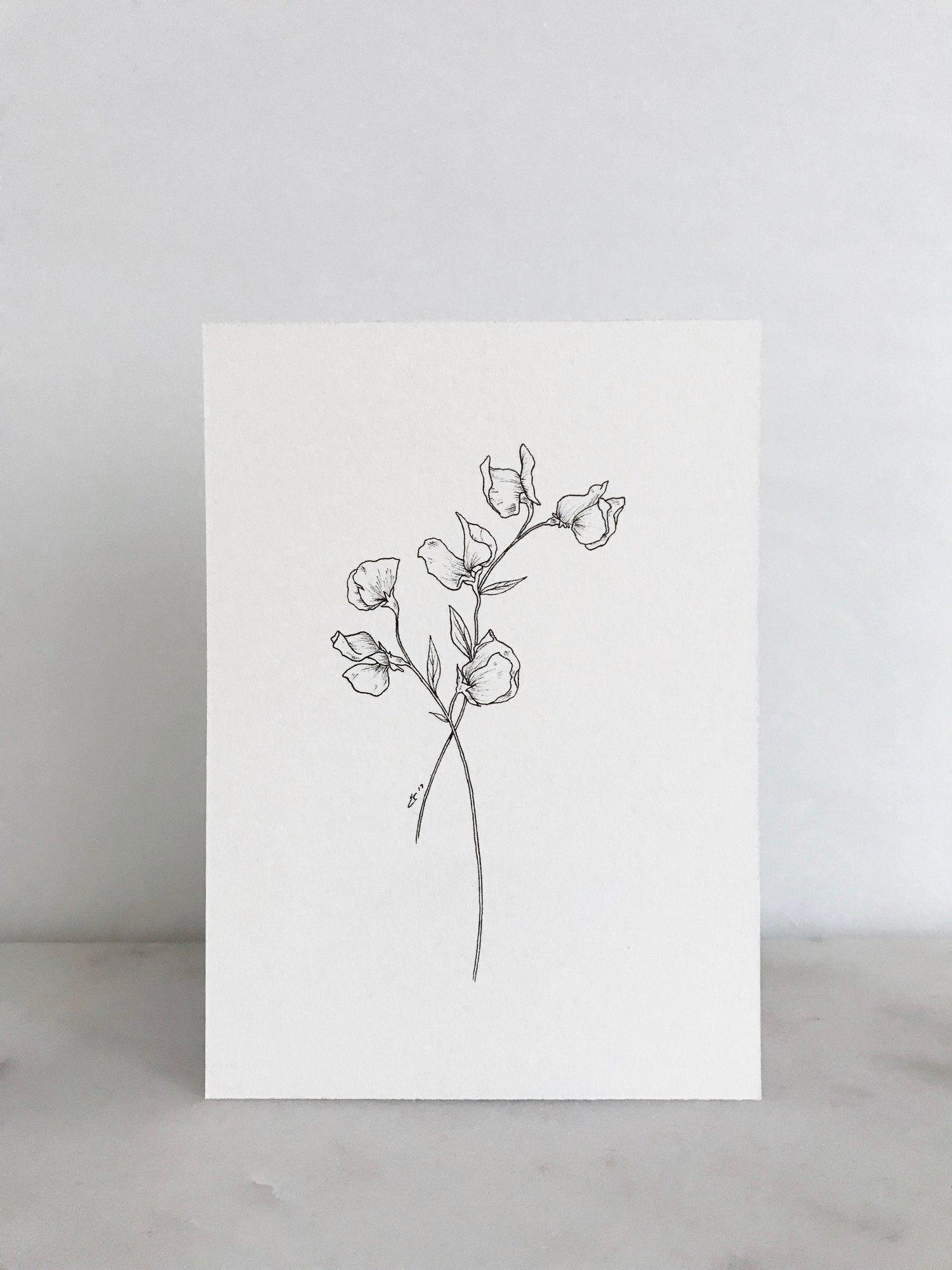 Linework Floral Art Print Esther Clark Co In 2020 Floral Prints Art Floral Drawing Flower Drawing