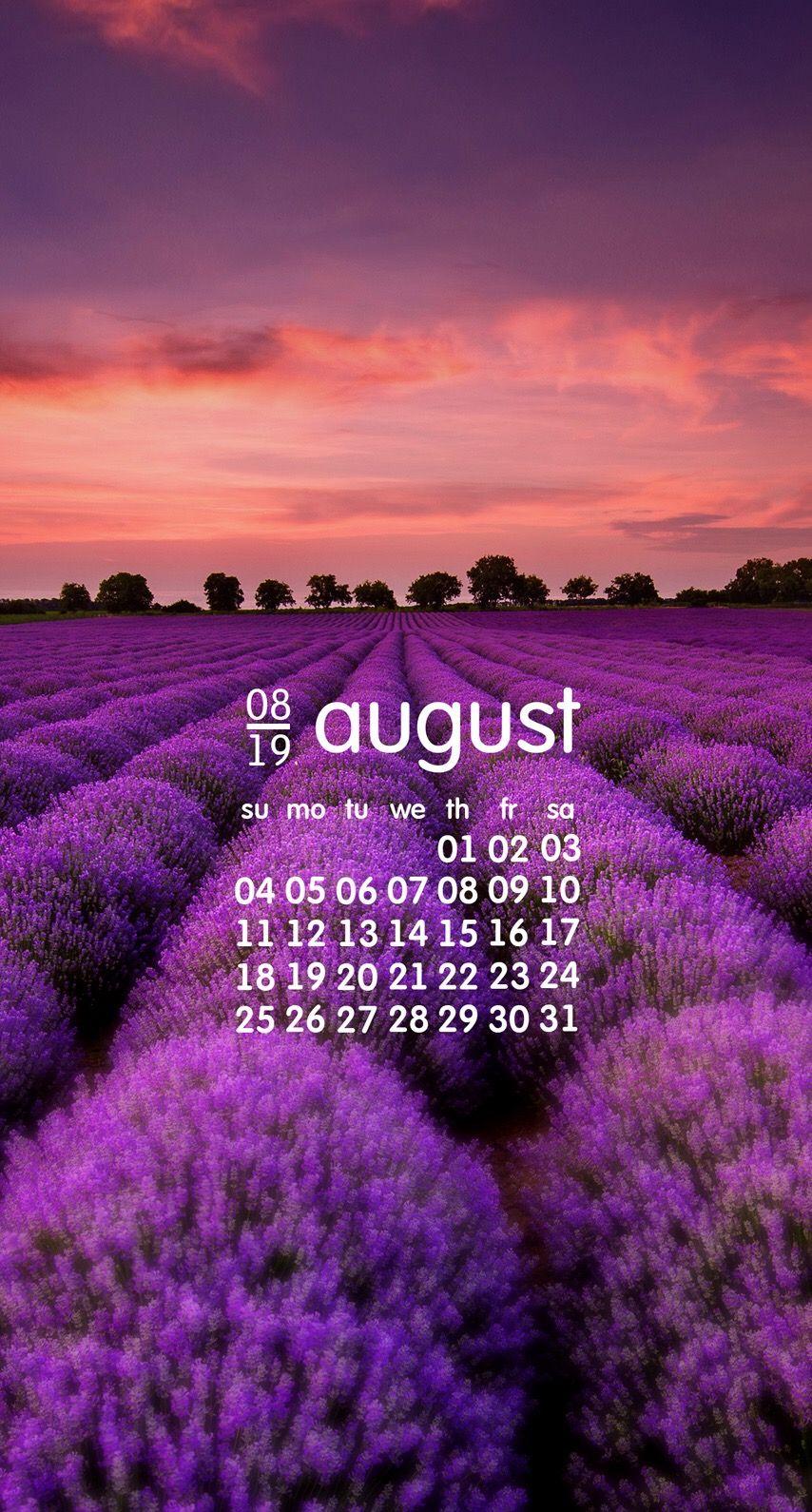Wallpaper Hdwallpaper Background August Iphone Iphonewallpaper Androidwallpaper Android Purple Cool Backgrounds Hd Wallpaper Special Wallpaper