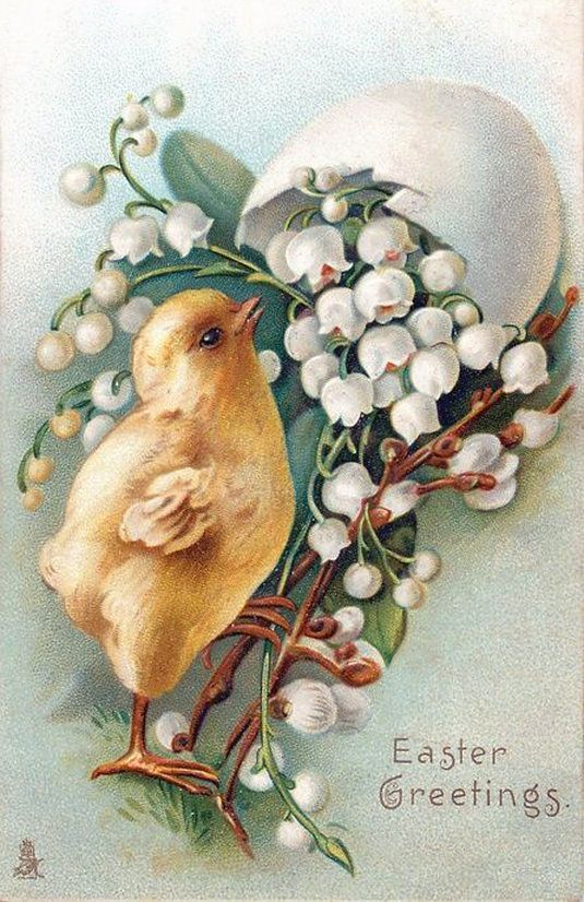 Пасхальные открытки цыплята, день рожденье деда