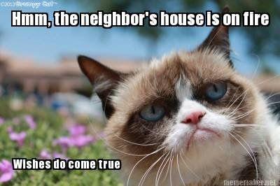 4th July Grumpy Cat Google Search Cat Quotes Funny Cat Memes Clean Grumpy Cat