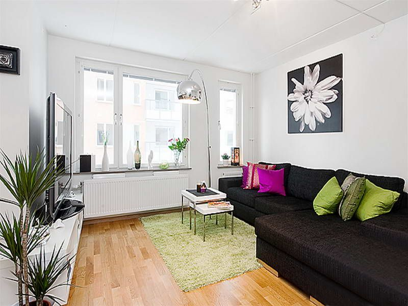 Decorating Small Apartments On A Budget With Green Carpet