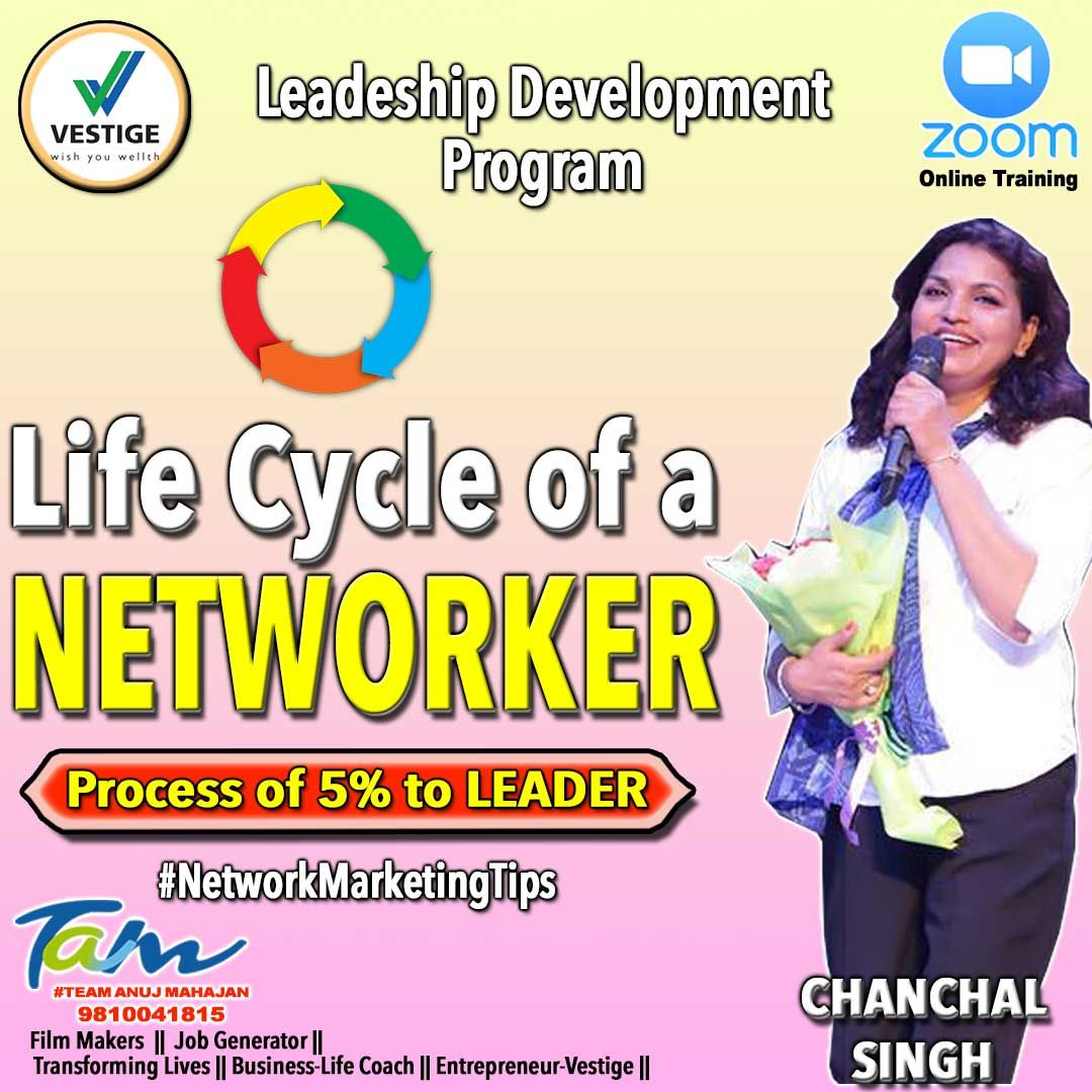 Life cycle of Networker in 2020 Vestige, Life cycles