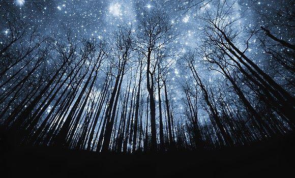 Gambar Pemandangan Indah Di Malam Hari Mengintip Langit Malam Terindah Di Dunia Magnificent Foto Pe Night Sky Wallpaper Silhouette Canvas Beautiful Night Sky