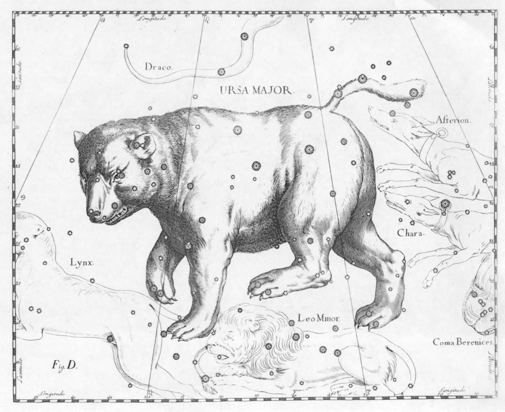 Ursa Major By Johannes Hevelius Who Drew Ursa Major As If Being Viewed From Outside The Celestial Sphere In Euro Grande Ourse Constellation Constellations