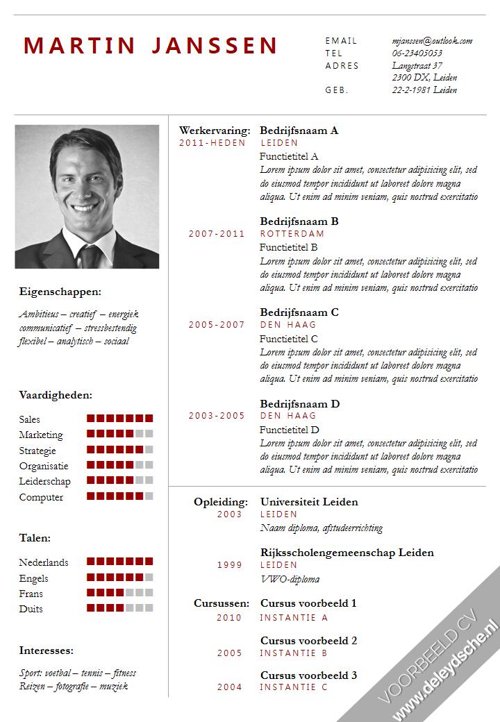 formeel cv ontworpen door de leydsche curriculum vitae advies en ontwerp  cv template in word